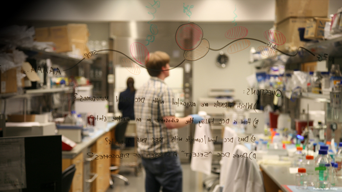 Careers | Janelia Research Campus