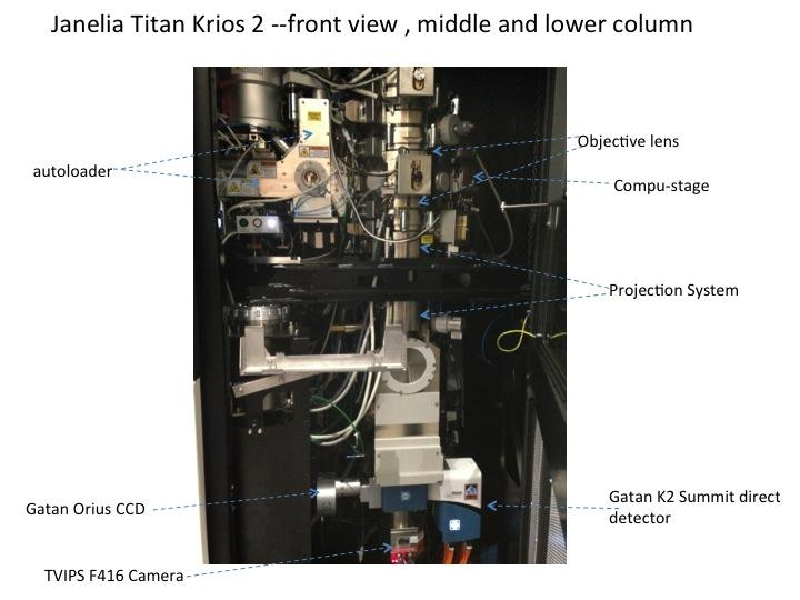 Janelia Titan Krios 2 --front view , middle and lower column