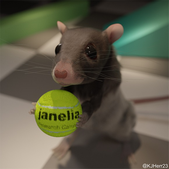 Mouse with Tennis Ball Lab homepage image