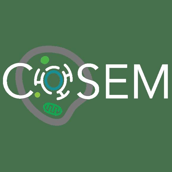 COSEM logo