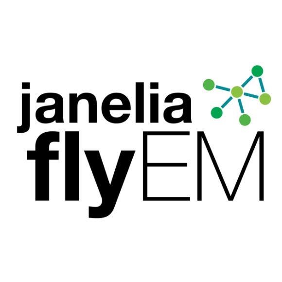 FlyEM Logo